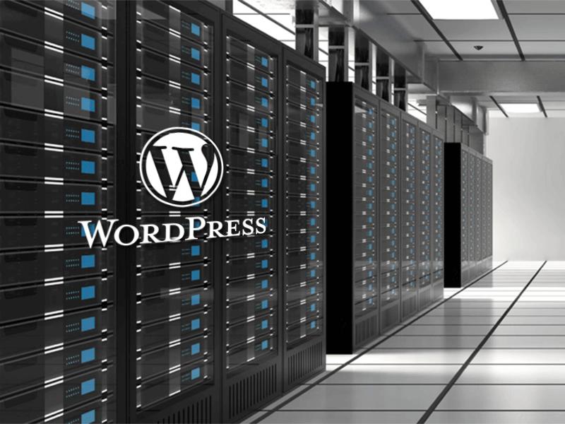 Stroški gostovanja WordPress strani