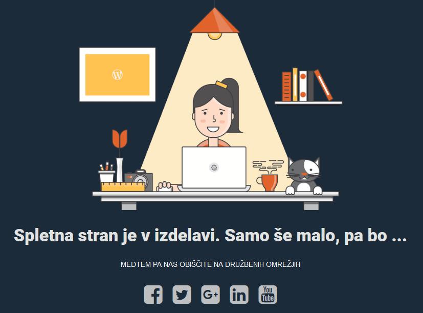 Spletna stran v izdelavi
