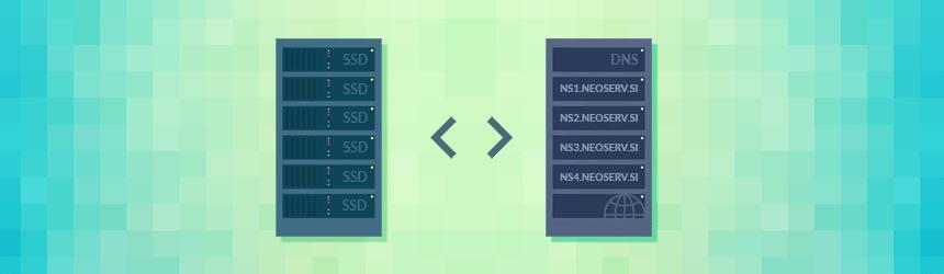 Spletno in DNS gostovanje