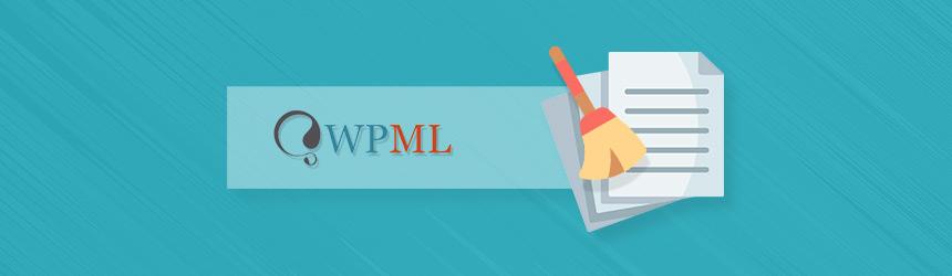 Izbris neuporabljenih prevodov WPML