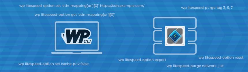 WP CLI - LiteSpeed Cache ukazi